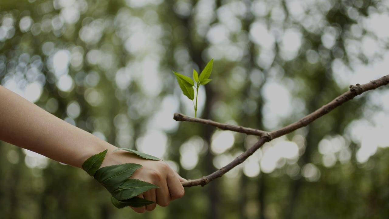 Esomar Ecomatcher Nebu People Planet Profit