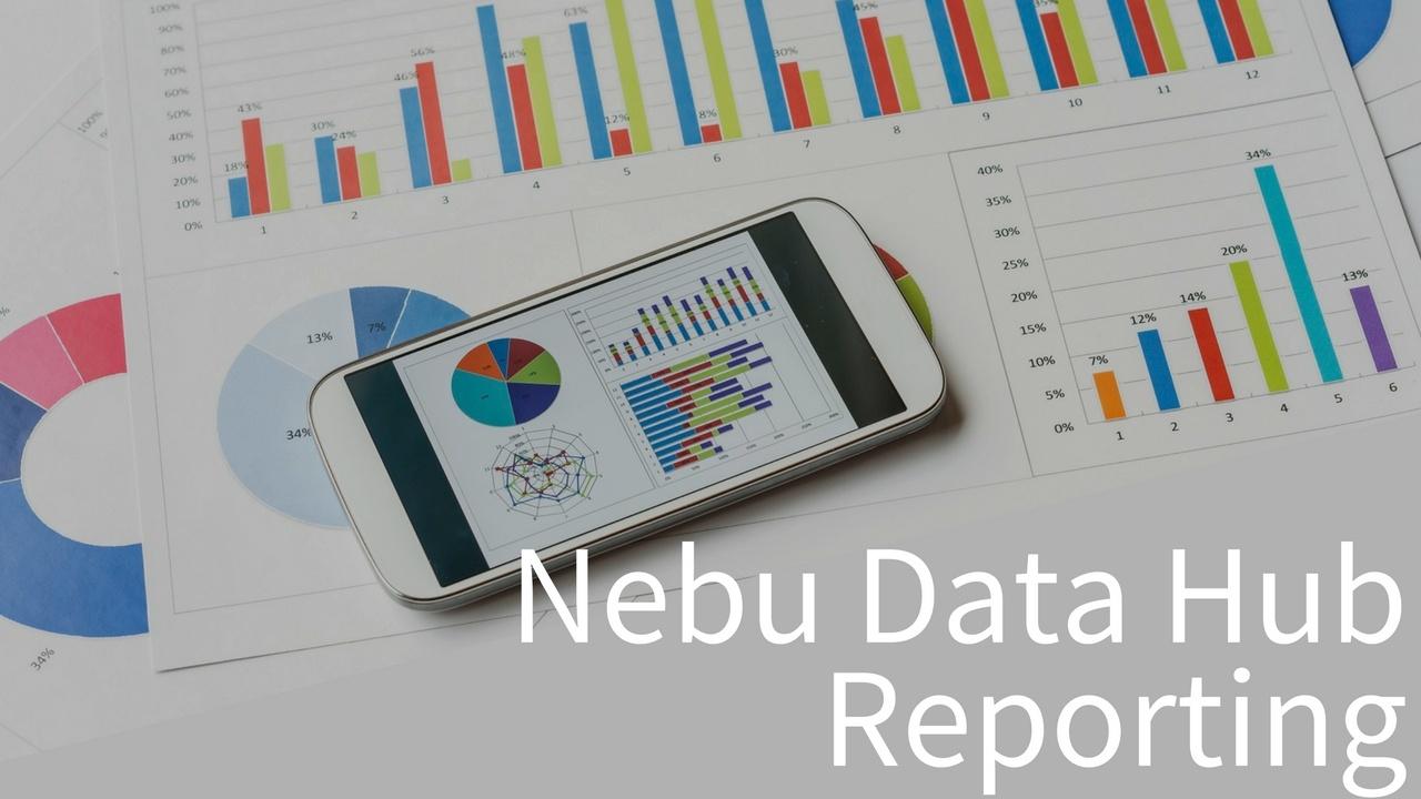 Nebu Data Hub Reporting