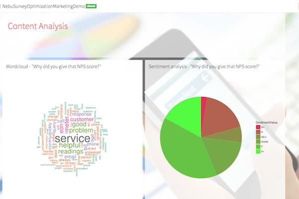 Survey Optimization Process by Nebu