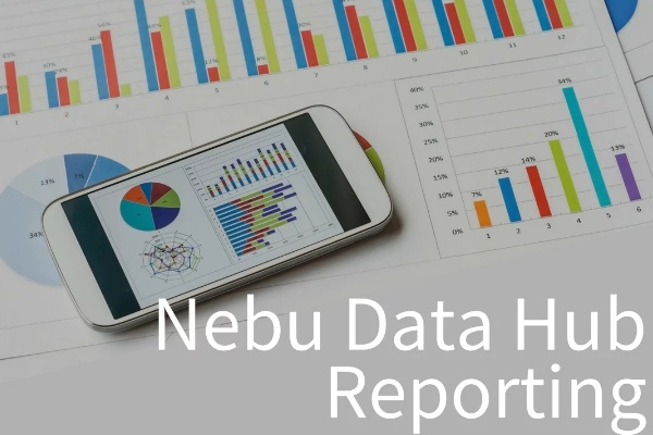 Discover reporting capabilities available through Nebu Data Hub