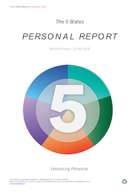 A few pages of a report generated for the 5 States of Success