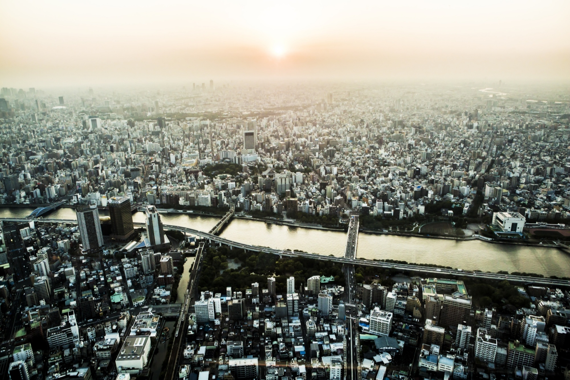 meet_in_tokyo_nebu.jpg